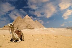 Aluguer de carros Kairo