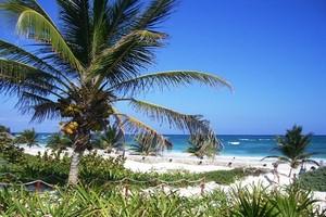 Aluguer de carros Cancun