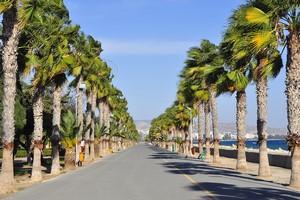 Aluguer de carros Limassol