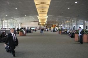 Aluguer de carros Tampa Aeroporto